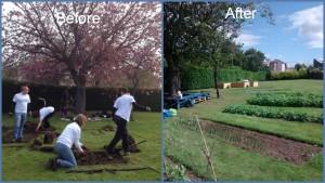 garden before after